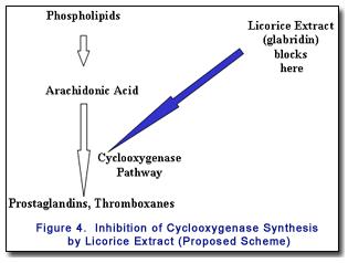 glabridin anti-infalmmation